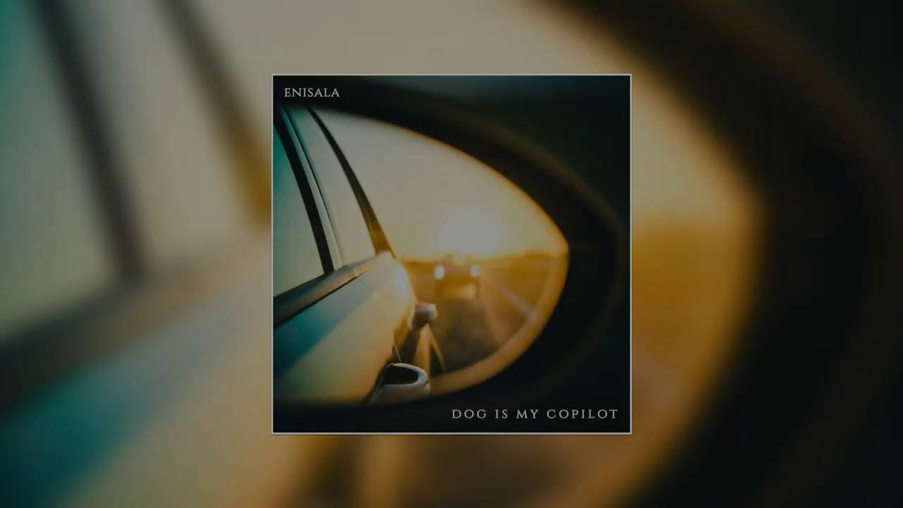 Dog Is My Copilot – Enisala